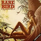 Sympathy by Rare Bird (1990)