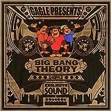 BIG BANG THEORY SHUFFLE