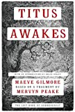 Titus Awakes Mervyn Peake
