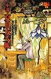 小説・夏目友人帳 (花とゆめCOMICS)