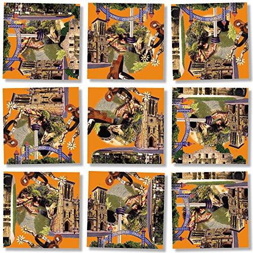 B Dazzle San Antonio Scramble Squares 9 Piece Puzzle