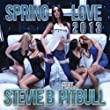 Spring Love 2013 (Radio Mix) [feat. Pitbull]