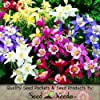 "100 Flower Seeds, Columbine ""Giant Star Mix"" (Aquilegia caerulea) Seeds by Seed Needs"