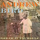 Andrew Bird Break It Yourself [VINYL]