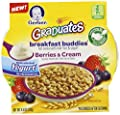 Gerber Graduates Breakfast Buddies Cereal, Berries Cream, 4.5 Ounce, 8 Count by Gerber Graduates