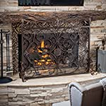 Darcie Black Brushed Gold Finish Wrought Iron Fireplace Screen by Great Deal Furniture