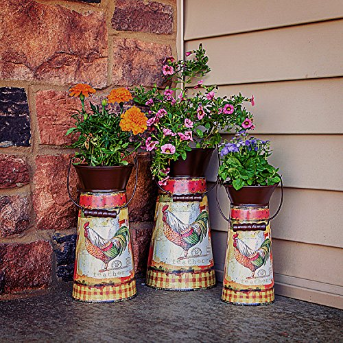 Janazala Metal Flower Pots Designed as Rustic Pitchers with Decorative Vintage Printing of Rooster on Each Flower Pot, Set of 3 3