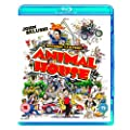 National Lampoon's Animal House [Blu-ray] [Region Free]