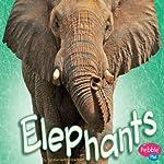 Elephants   Sydnie M. Kleinhenz
