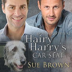 Hairy Harry's Car Seat Audiobook