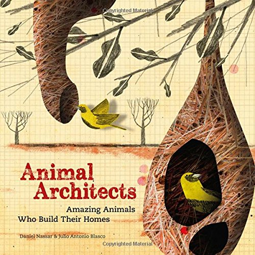 Animal-Architects-Amazing-Animals-Who-Build-Their-Homes