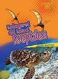 Endangered and Extinct Reptiles (Lightning Bolt Books - Animals in Danger)