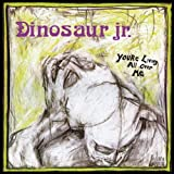 Dinosaur Jr. You're Living All Over Me [VINYL]