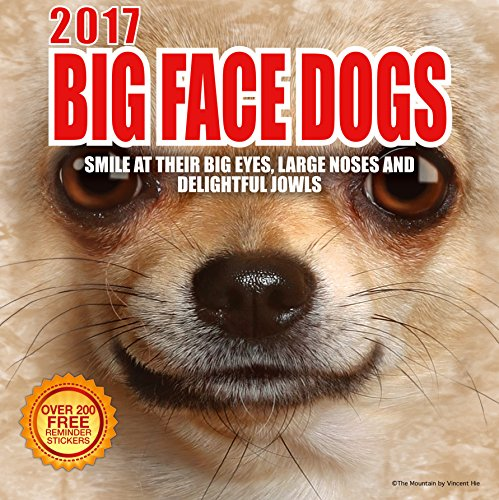 2017-big-face-dogs-12-x-12-wall-calendar-210-free-reminder-stickers