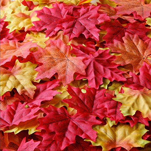 SunAngel Package of Approximately 300 Artificial Autumn Maple Leaves Fall Silk Leaves for for Weddings, Events and Decorating (Fake Packages compare prices)