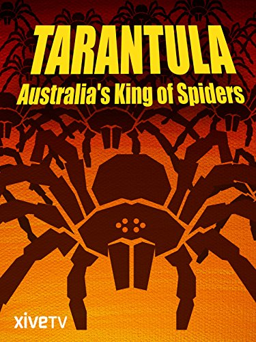 Tarantula: Australia's King of Spiders