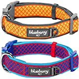 Blueberry Pet Easter Spring Collars 5/8