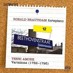Sämtliche Klavierwerke Vol.12: Variationen Vol.2