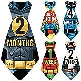 Original Stick'Nsnap (TM) 17 Baby Monthly Necktie Onesie Stickers -