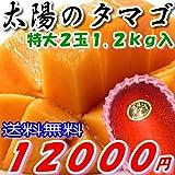 【送料無料】太陽のタマゴ 秀品(贈答向け) 特大2個 約1.2kg 化粧箱入 糖度15度以上