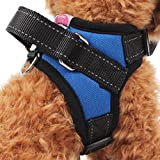 Gililai Adjustable No Pull Dog Collar Harness with Handle On Top - Best for Walking, Hiking & Training Canie - 3 Colors and 4 Sizes (Medium, Blue)