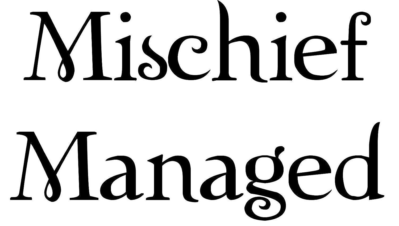Amazon.com: Mischief Managed