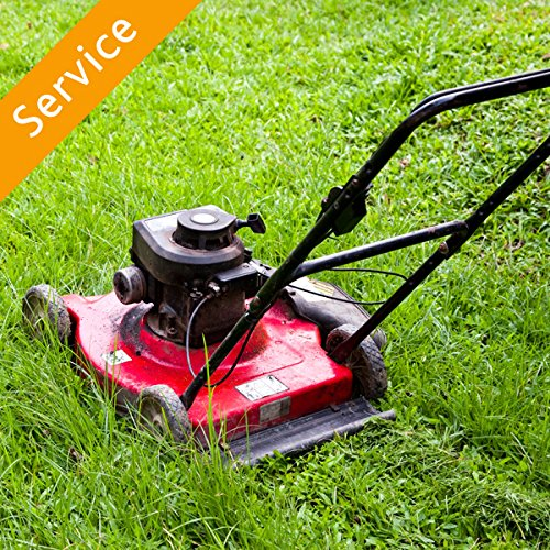 lawn-mowing-small-lawn-less-than-5000-sq-ft