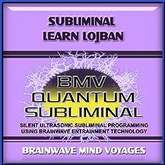 Subliminal Learn Lojban