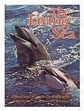 The Living Sea: An Illustrated Encyclopedia of Marine Life (0399117482) by Burton, Robert