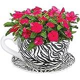 Botanico Giant Garden Cup & Saucer Flower Planter Plant Pot-Zebra-33cm