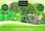 1000 Herb Seeds 8 in 1: Parsley/Basil/Chives/Mint/Dill/Thyme/Marjoram/Garlic Chives/MULTI-BUY DISCOUNT/Kitchen Collection