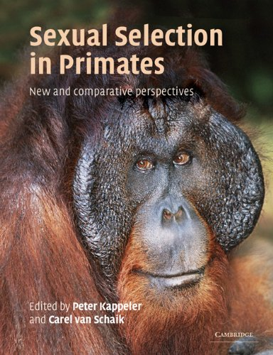 Sexual Selection in Primates Paperback: New and Comparative Perspectives