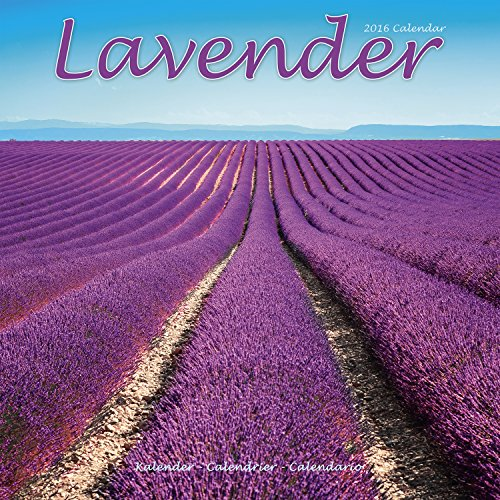 Lavender Calendar - 2016 Wall calendars - Garden Calendars - Flower Calendar - Monthly Wall Calendar by Avonside