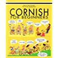 Cornish for Beginners