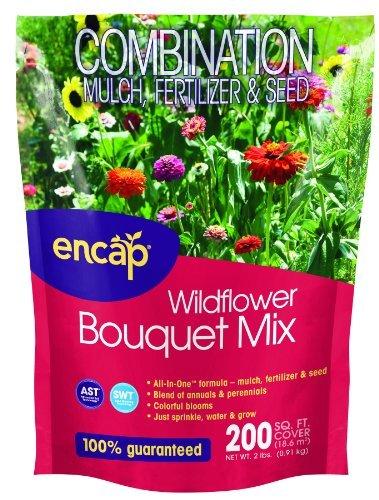encap-10809-6-wildflowers-bouquet-mix-2-pounds-jardin-pelouse-entretien