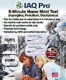 IAQ Pro 5-Minute Home Mold Test Aspergillus, Penicillium, Stachybotrys