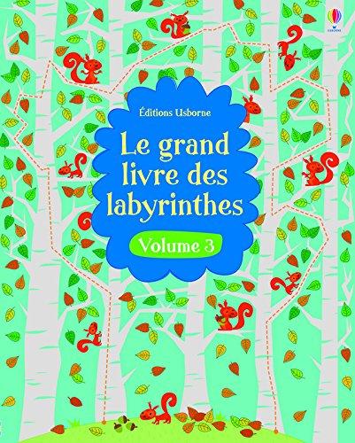 Le grand livre des labyrinthes - volume 3