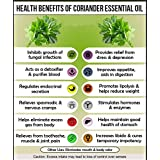 Ambrosial Coriander Essential Oil 100% Natural Organic Uncut Undiluted (1000ML)