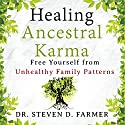 Healing Ancestral Karma: Free Yourself from Unhealthy Family Patterns Audiobook by Dr. Steven Farmer Narrated by Craig Beck