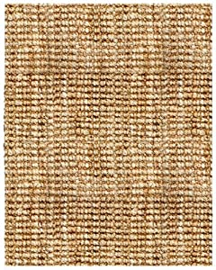 Anji Mountain AMB0300-0058 Andes Jute Area Rug, Natural, 5-Foot by 8-Foot
