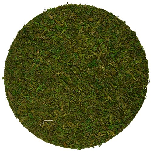 supermoss-26335-moss-soil-toppers-fresh-green-assorted-4-sizes