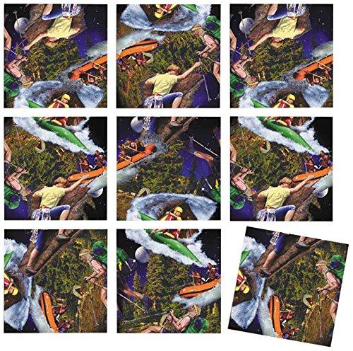 B Dazzle Wilderness Adventure Scramble Squares 9 Piece Puzzle
