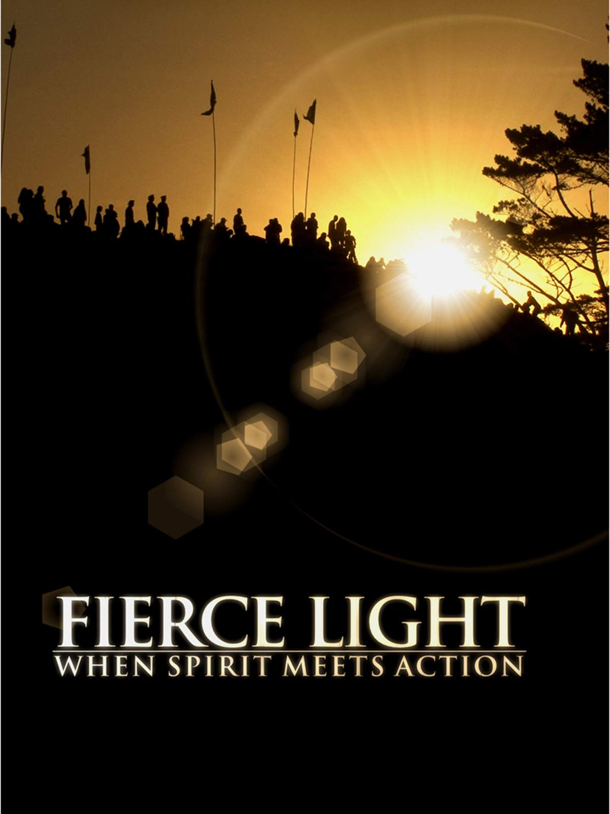 Fierce Light: When Spirit Meets Action on Amazon Prime Video UK