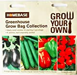 Homebase Greenhouse Grow Bag Collection Seeds - 4 varieties , each separately packed . Aubergine black beauty , Cucumber Telegraph Improved , Pepper California Wonder , Tomato Alicante