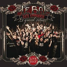 Le Bal Des Enrag�s - Le grand retour (Live 2013)