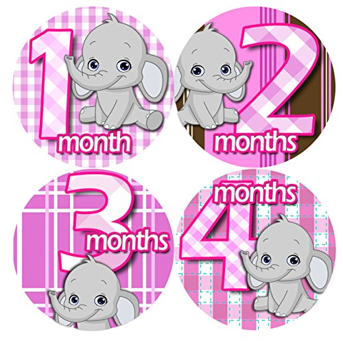 GREY ELEPHANTS PINK GIRL 1-12 Months Baby Monthly One Piece Stickers Baby Shower Gift Photo Shower Stickers