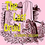 The Last Druid | Joseph E. Kelleam
