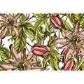 Caskata Studio 50 Count Paper Placemats, Pink Passion