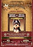 ファンタジーワールド 9660-6-PB OVEN・BAKED TRADITION(オーブン・ベークド・トラディション) アダルト 成犬用 2700g(小粒)