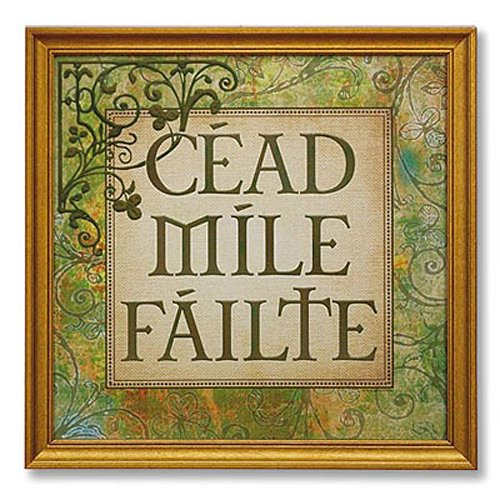 gaelic sayings Watch more st patrick's day survival guide videos:.